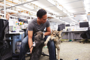 Sus oficinas son 'pet friendly'. Fuente: Google